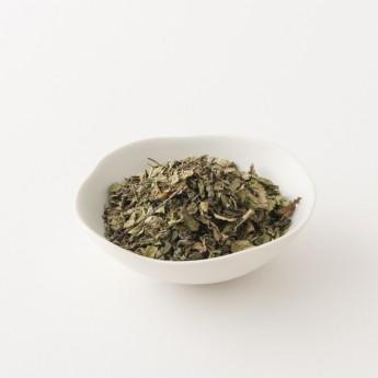 détail du thé à la menthe alveus