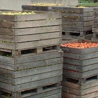 vinaigre de cidre bio 0.5 l la récolte et le stockage des différentes variétés de pommes au Manoir d'Apreval