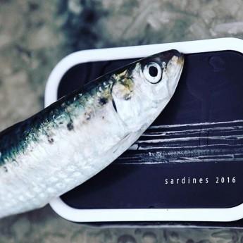 les sardines à l'huile de colza bio 115g de la Compagnie Bretonne sont travaillées fraiches